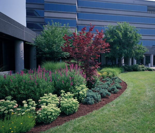Landscaping Ideas For Commercial Buildings