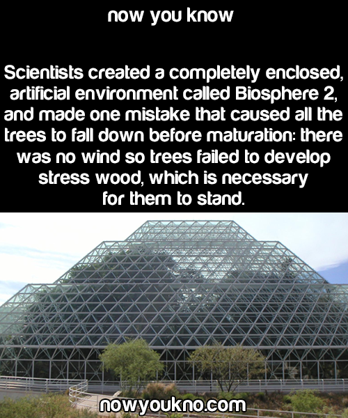 I don't know about this biosphere but that condition is a ...