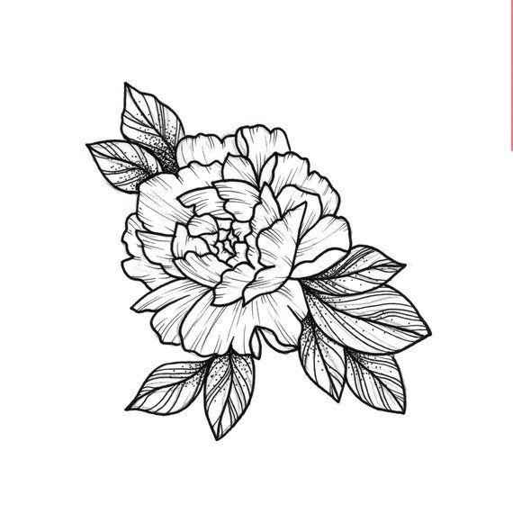 Carnation Tattoo Drawing Sketch Flower Petal Linework Tattoo Blossom Flash Flashtattoo Carnation Tattoo Carnations Carnation Flower Tattoo