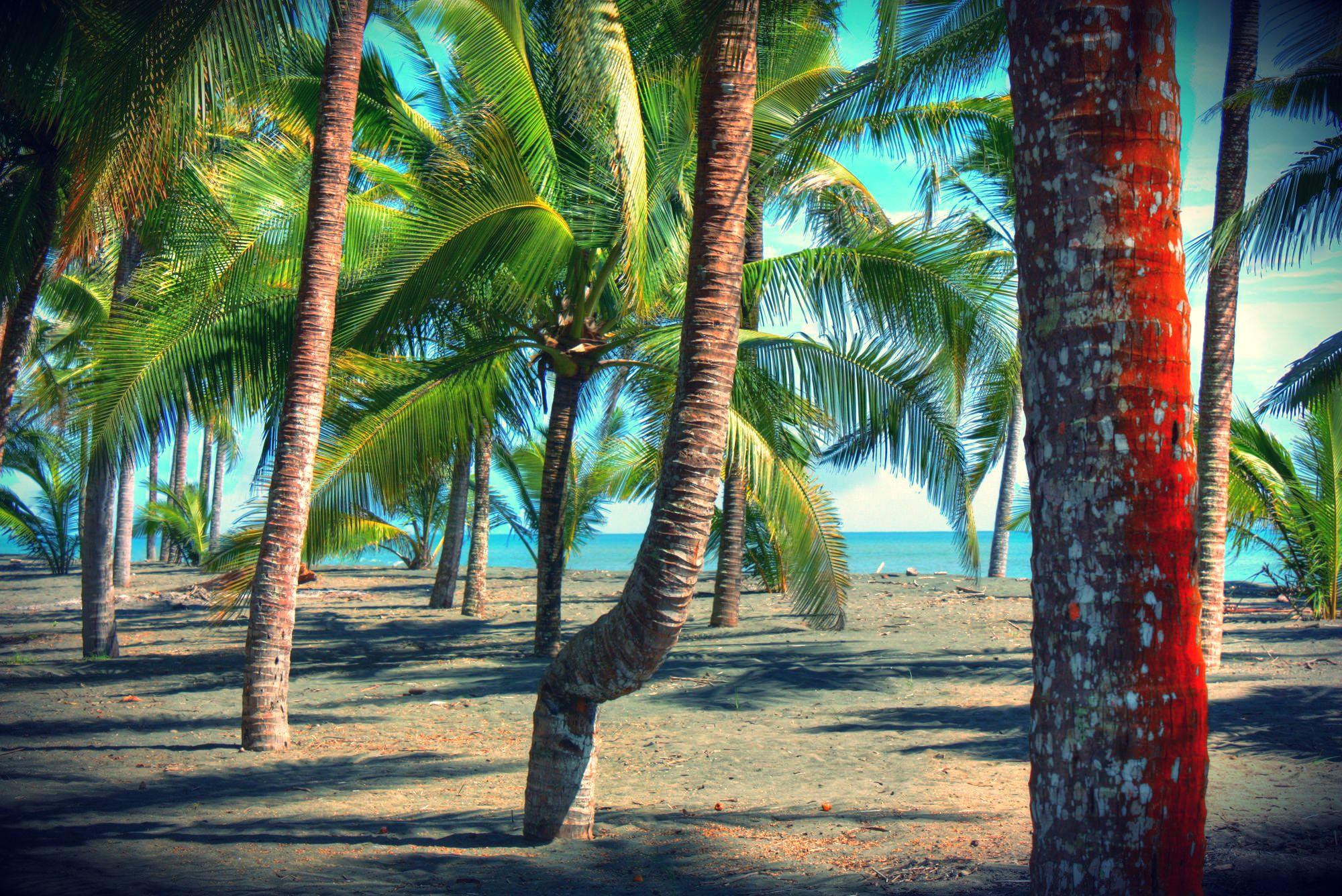 Coco Beach Panama Where The Sun Is Always Shining Realestate David Paradise
