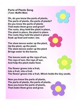 Plant Songs Plant Song Songs Plant Science