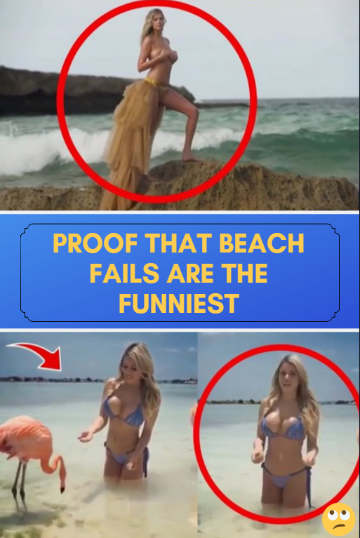 Funny Beach Pictures : funny, beach, pictures, Proof, #Beach, #Fails, #Funniest, #humor, #jokes, #hilarious, #pictures, #images, #photos, #epic, #weird, #lol…, Beach, Photos,, Jokes,, Pictures