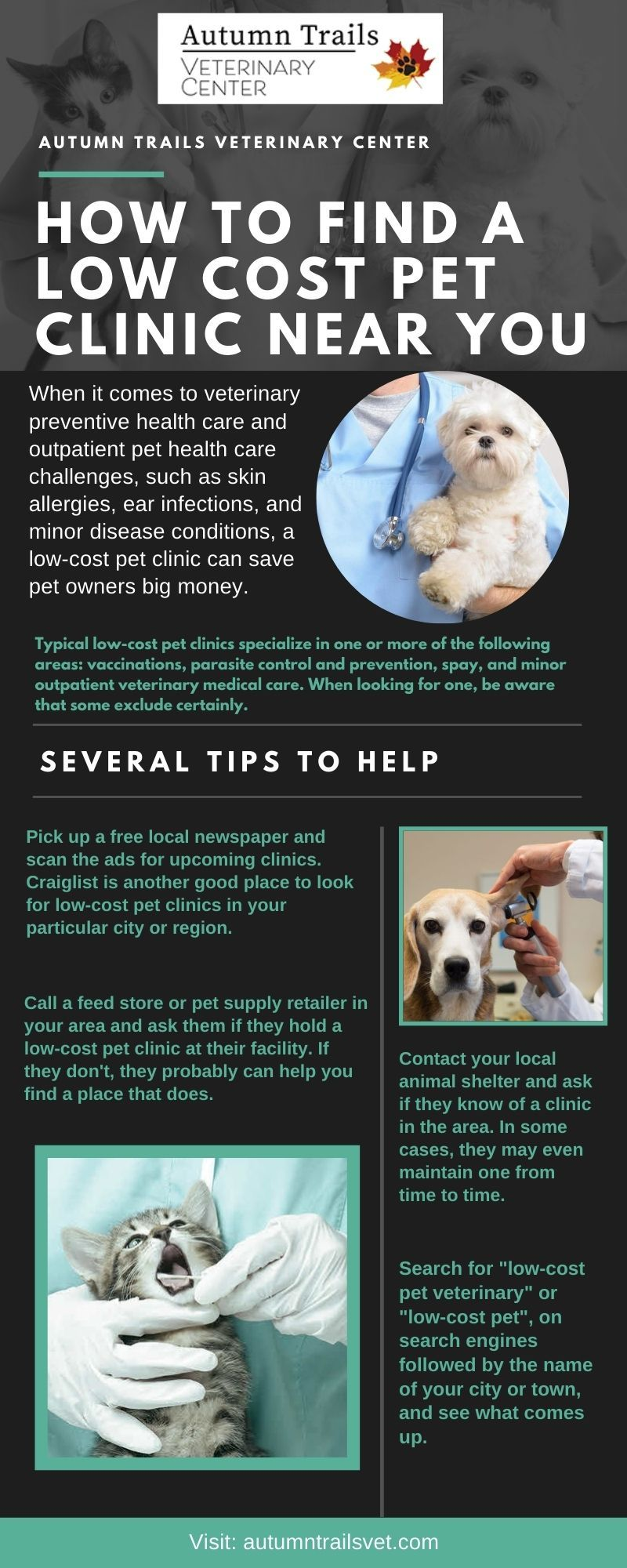 How To Find A Low Cost Pet Clinic Near You In 2020 Pet Clinic Pet Health Care Preventative Health