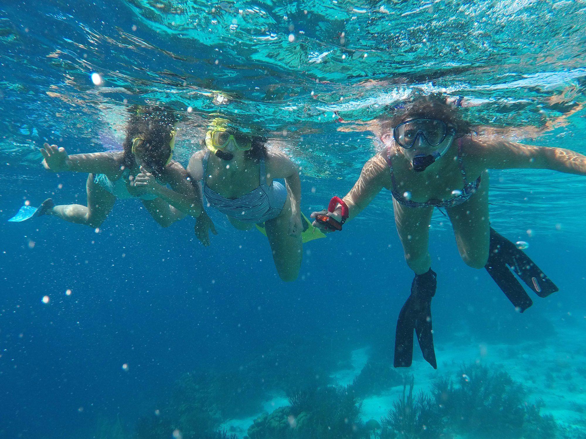 Bonaire's most popular snorkel experiences: Sea Cow Snorkeling Trips, Kralendijk