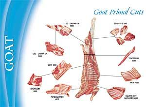 What The Heck Is A Primal Cut Goat Meat Cuts And How To Cook Them