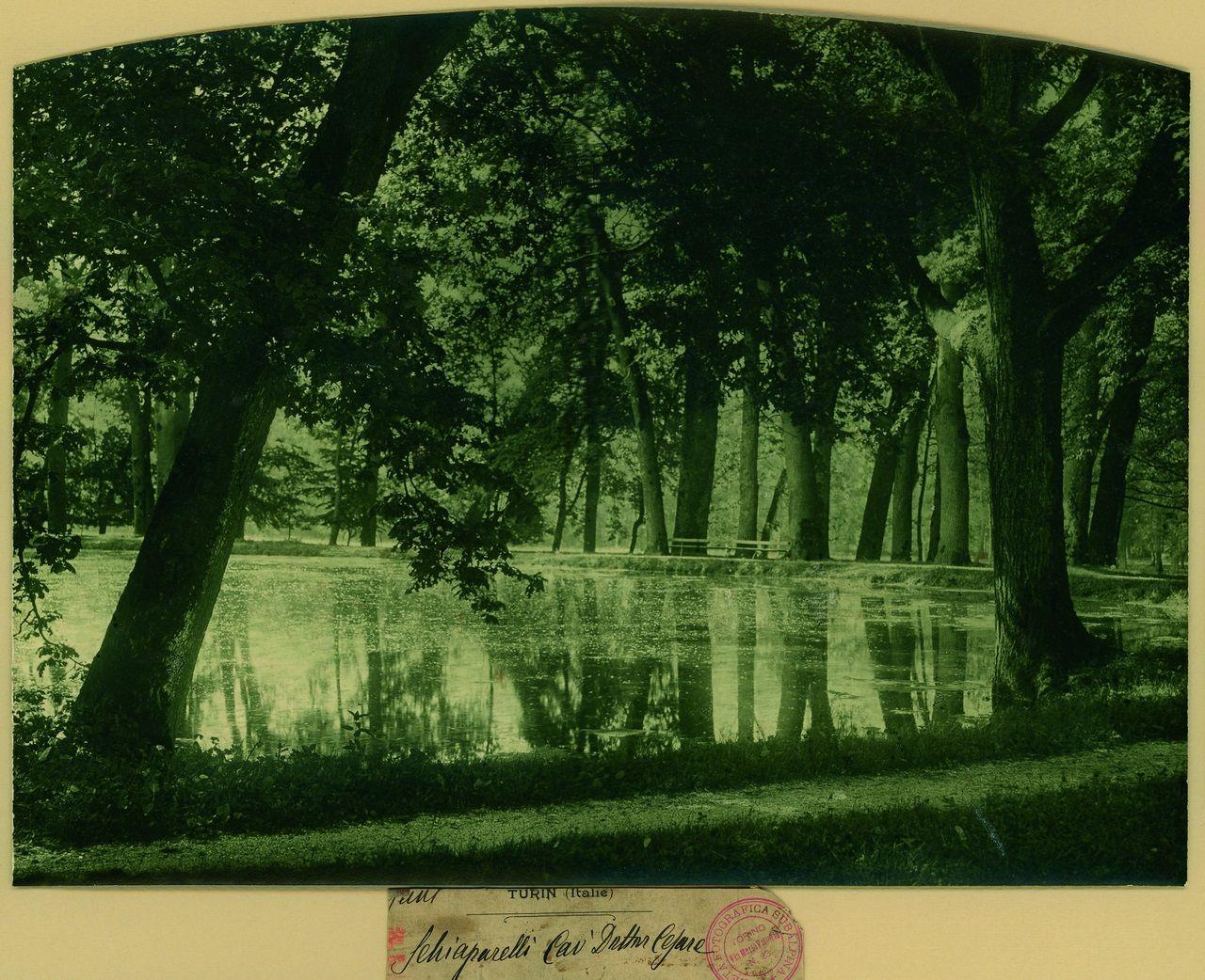 Cesare Schiaparelli, Paesaggio lacustre, 1905-1907 Stampa al carbone  Collezione Società Fotografica Subalpina, Torino