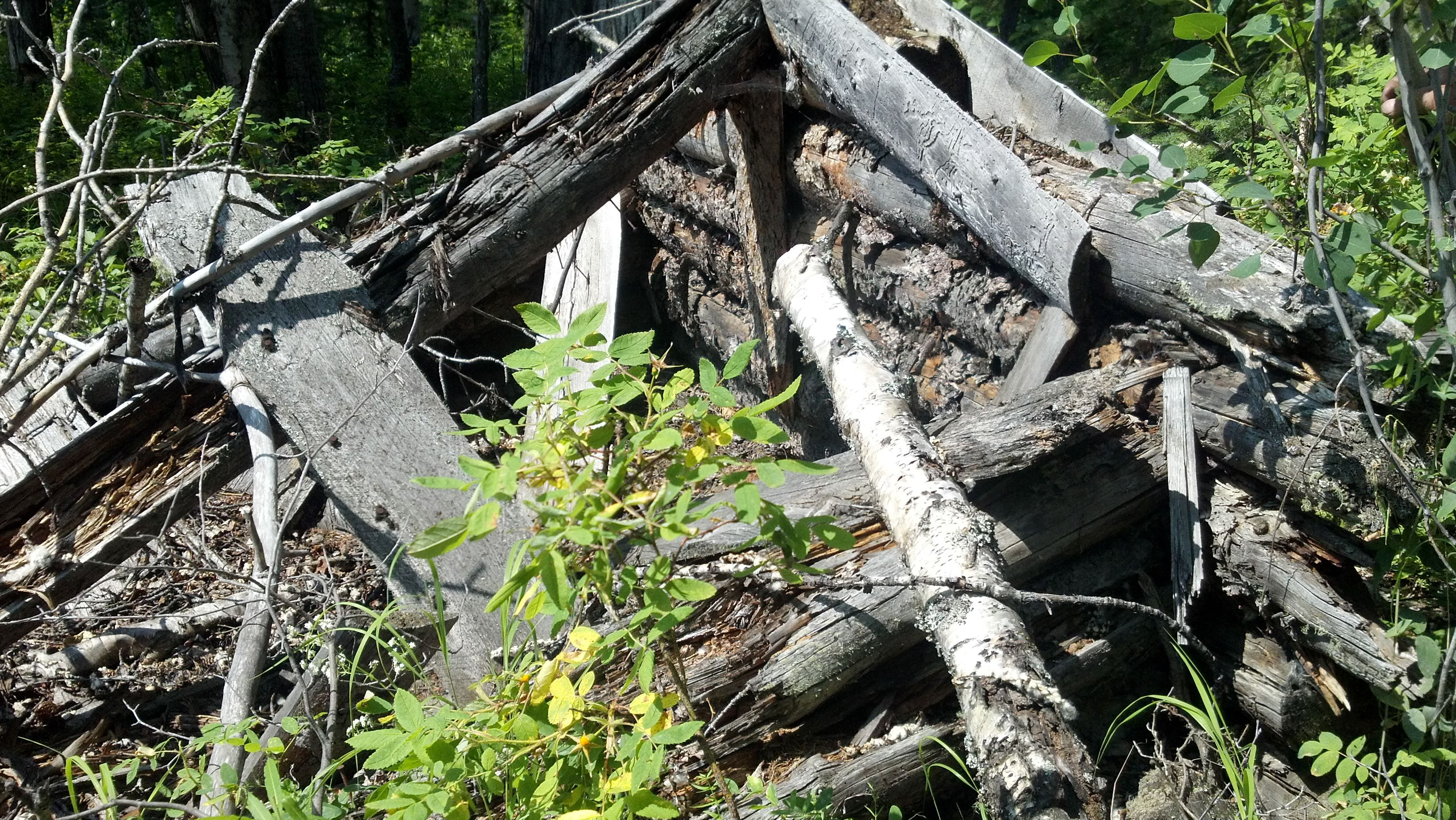 Remains of Trapper's Log Cabin built by my Great-Uncles. The nearby lake is named after them.