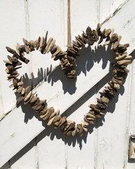 Category Driftwood and shells