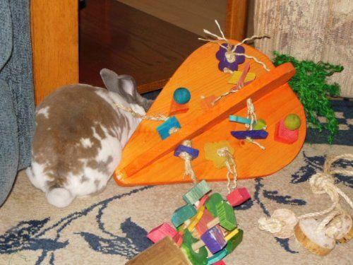 Crazy Huge Carrot House Rabbit Playground Equipment - See more at: http://pet.florenttb.com/pet-supplies/small-animals/crazy-huge-carrot-house-rabbit-playground-equipment-com/#sthash.cHoMAZEE.dpuf
