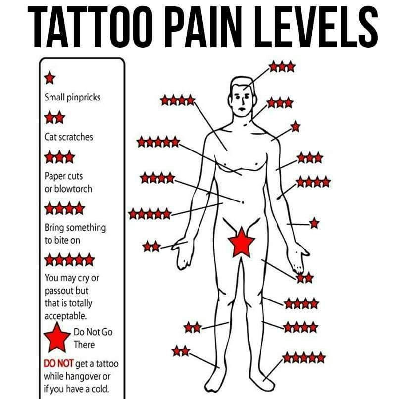 Pain level for tatt 3 d tatto pinterest tatt tattoo for Stomach tattoo pain level