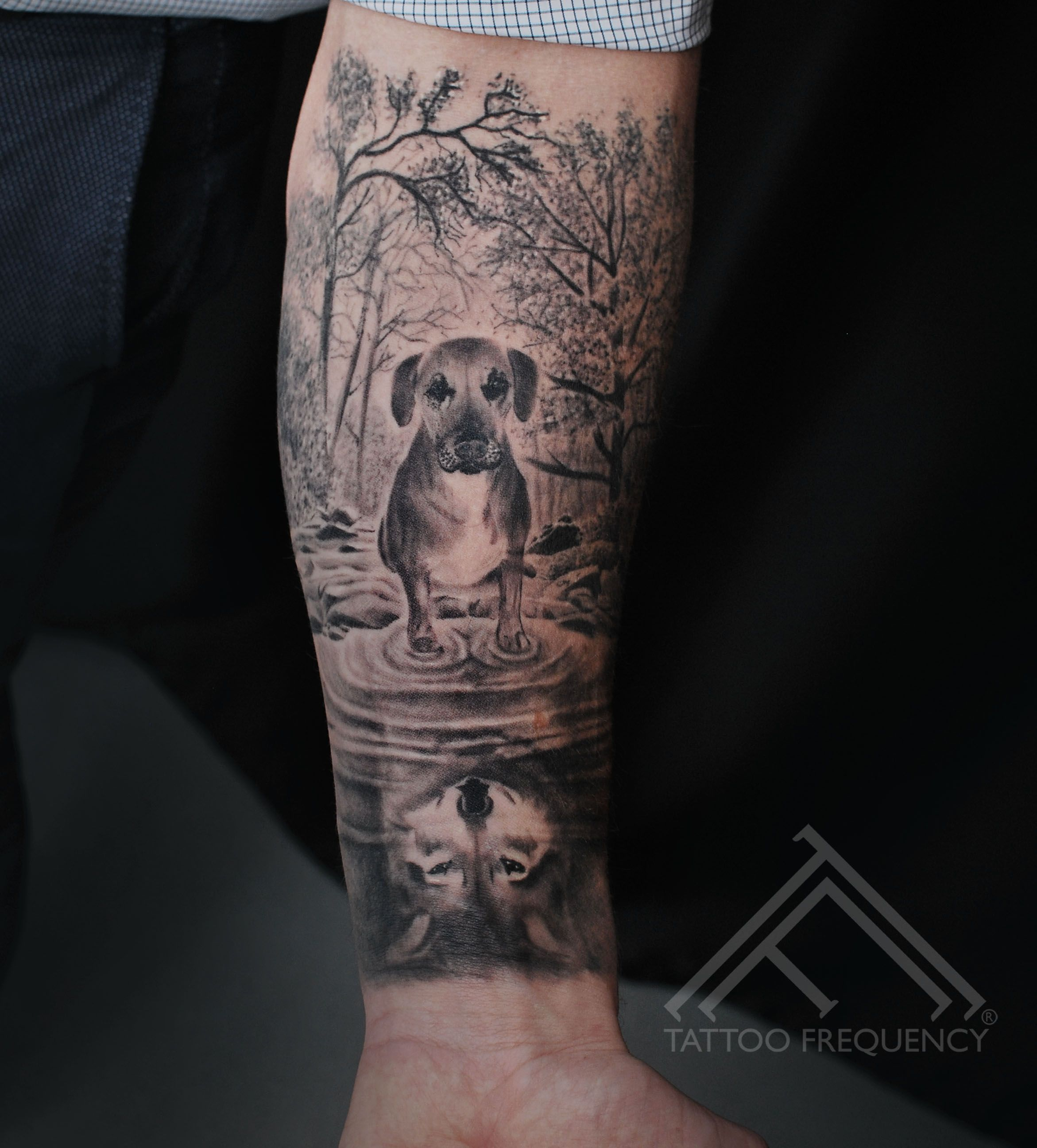 Lovely Black And Gray Dog In Puddle And Wolf In Reflection Artist Janis Andersons Dog Wolf Dogtattoo Dog Tattoos Reflection Tattoo Black And Grey Tattoos