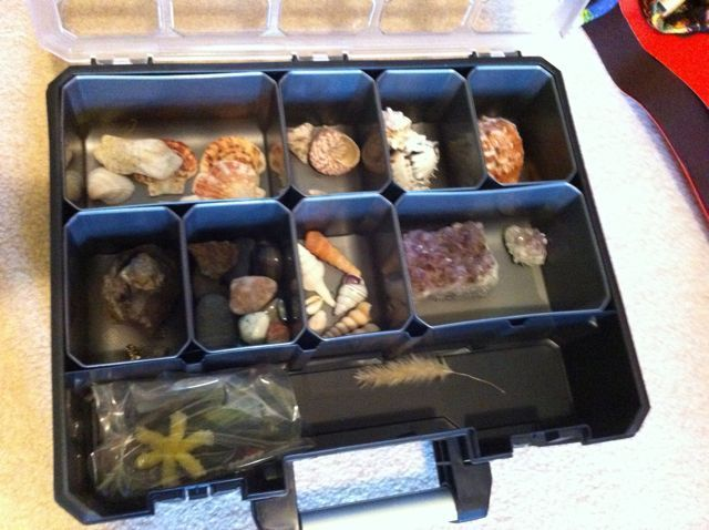 A Husky Deep Pro Organizer Is Perfect For Keeping Natural