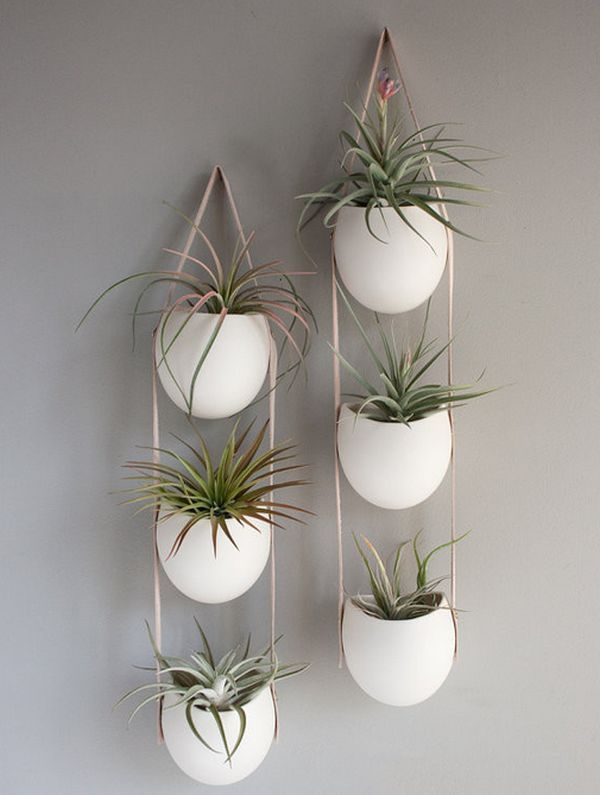 Hängende Wanddeko hängende blumentöpfe - coole pflanzenideen für den innenraum