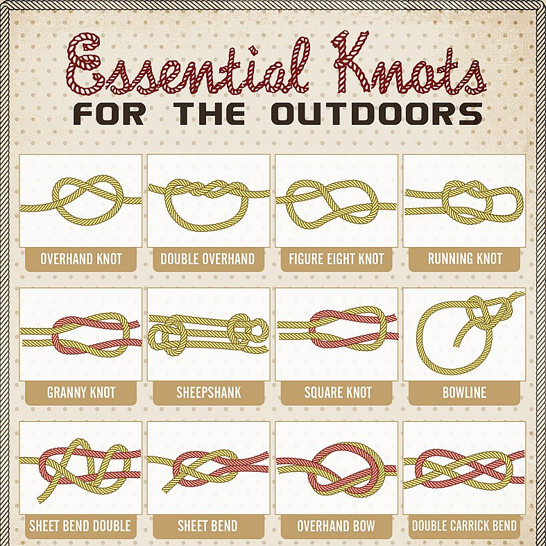 Essential knots health pinterest essentials and survival for Fishing knots pdf