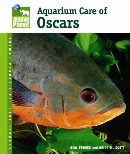 Aquarium Care of Oscars (Animal Planet Pet Care « Library User Group
