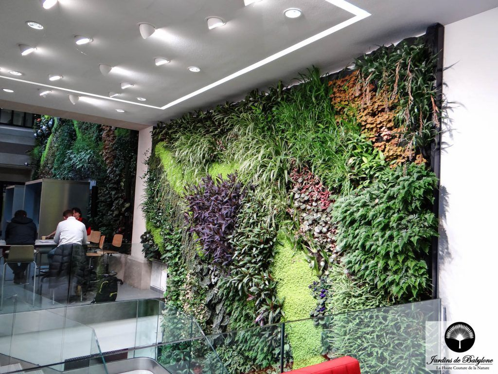 Jardin vertical mur v g tal int rieur vertical garden mur - Jardin vertical interieur ...
