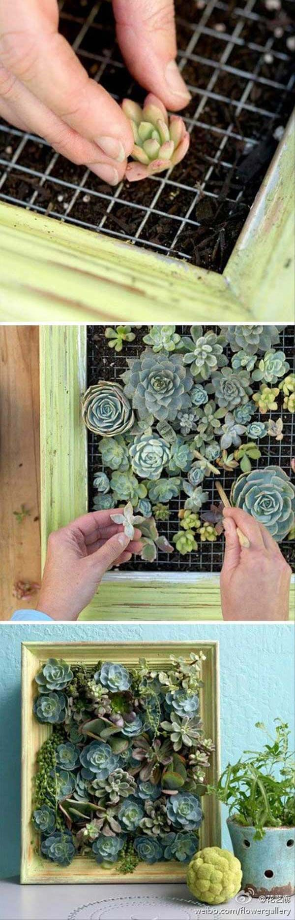 Mini garden inspiration  Want to make your interior more beautiful and attractive Why not