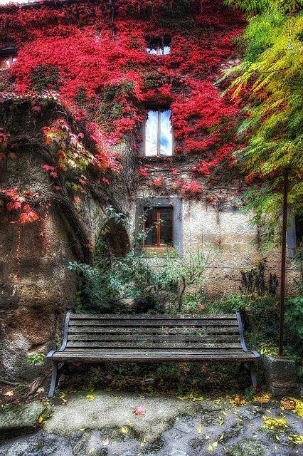La banca con le foglie rosse, via Flickr Bancas Pinterest - jardines con bancas
