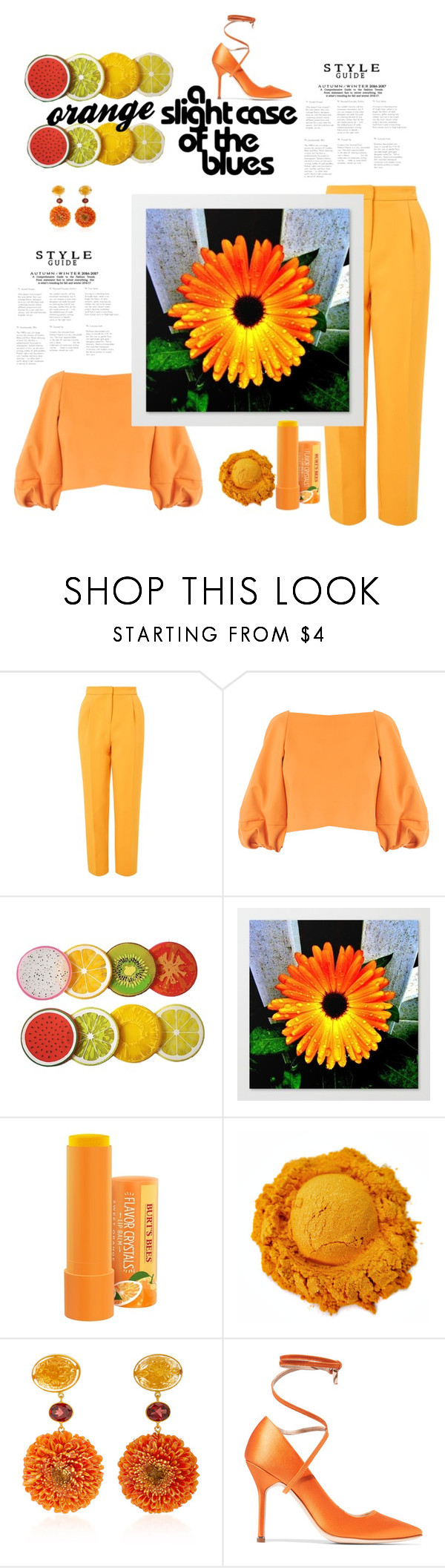 """cute orange"" by daveriy ❤ liked on Polyvore featuring Topshop, TIBI, Bahina and Vetements"