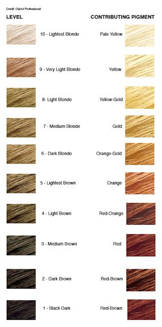 Pin By Vanessa Ennocenti On Look Book Hair Inspiration Level 8 Hair Color Hair Color Chart Levels Of Hair Color