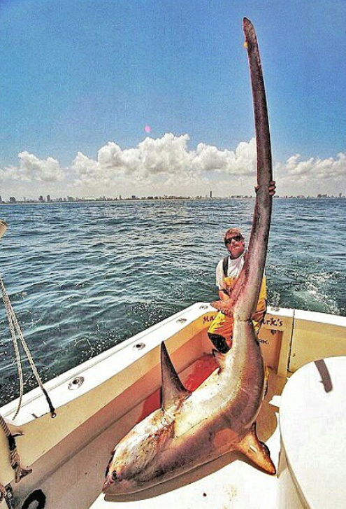 Pin On Crappie Fishing