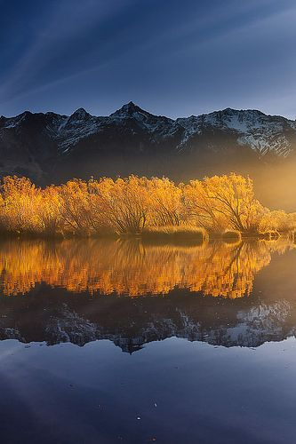 Glenorchy Lagoon Reflections on Lake Wakatipu ~ Otago, New Zealand