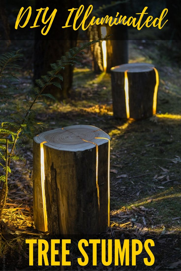 Diy Illuminated Tree Stumps These Have To Be By Far The Best Lamp Light Set Up I Have Ever Come Across Who Woul Backyard Lighting Diy Backyard Diy Outdoor