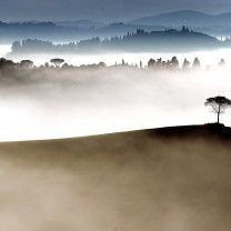 Lonely, early in the morning in Toscane, Italia. Photo: Johan Ensin