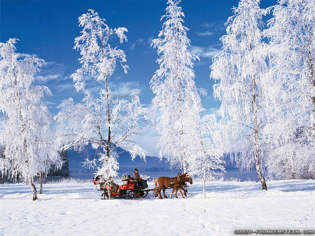 Beautiful Snowy Scene Wallpapers