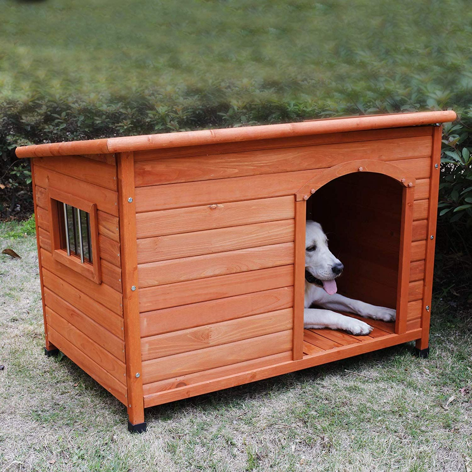 Outdoor Dog Kennels Outside Dog Houses Dog Houses Wooden Dog House