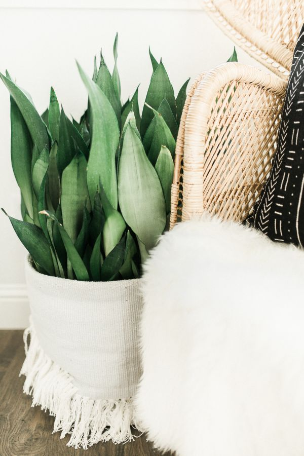 Boho decor accents: http://www.stylemepretty.com/living/2016/01/25/modern-bohemian-california-home-tour/ | Photography: Daphne Mae - http://www.daphnemaephotography.com/
