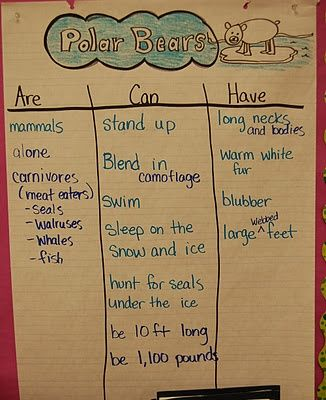 Informational Reading And Writing In Kindergarten  Polar Bear
