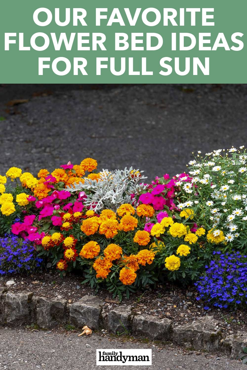 Our Favorite Flower Bed Ideas For Full Sun In 2020 Flower Beds Petunia Flower Full Sun Flowers