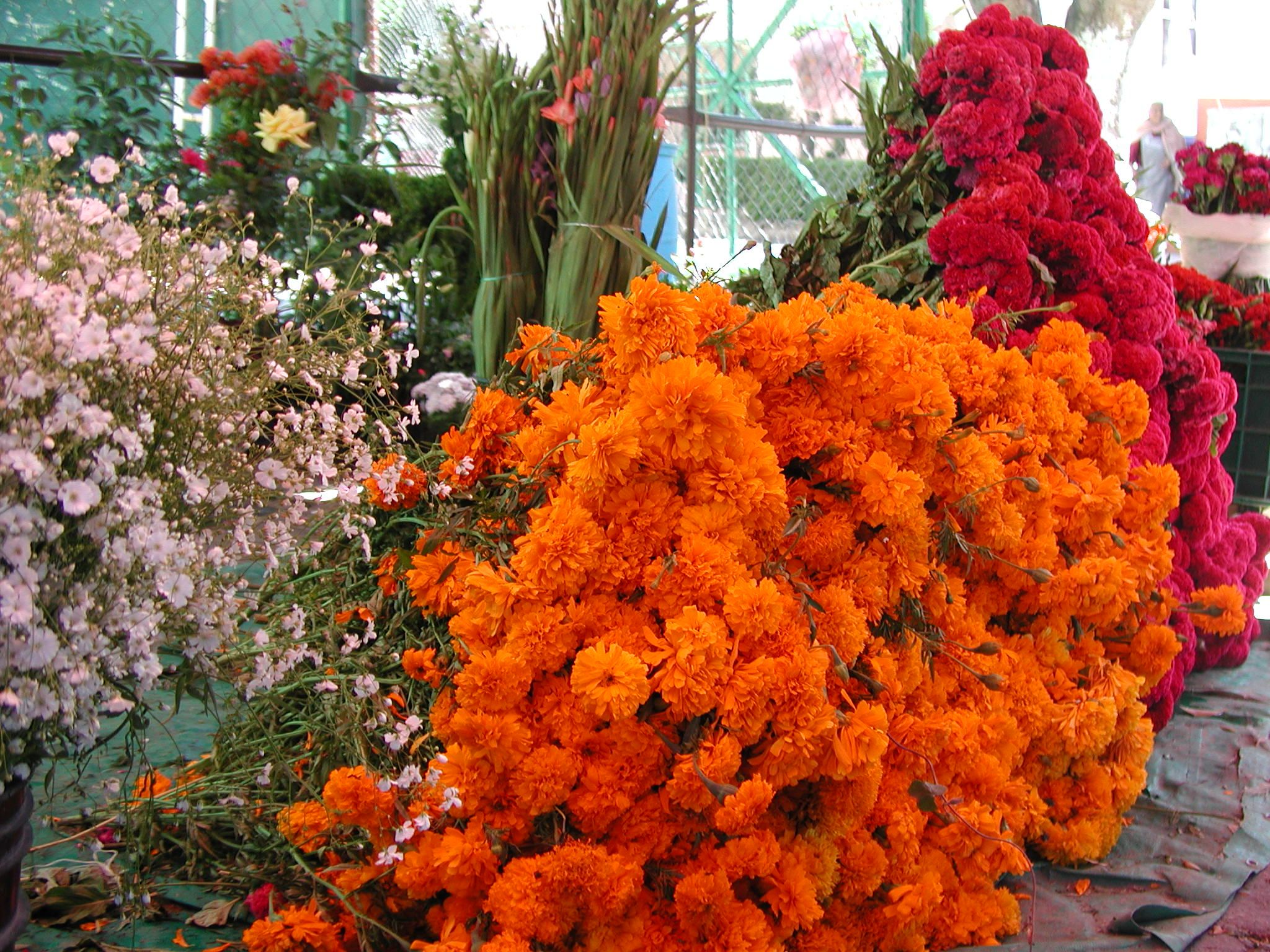 day of the dead flowers in puebla www mexicana nirvana com why we