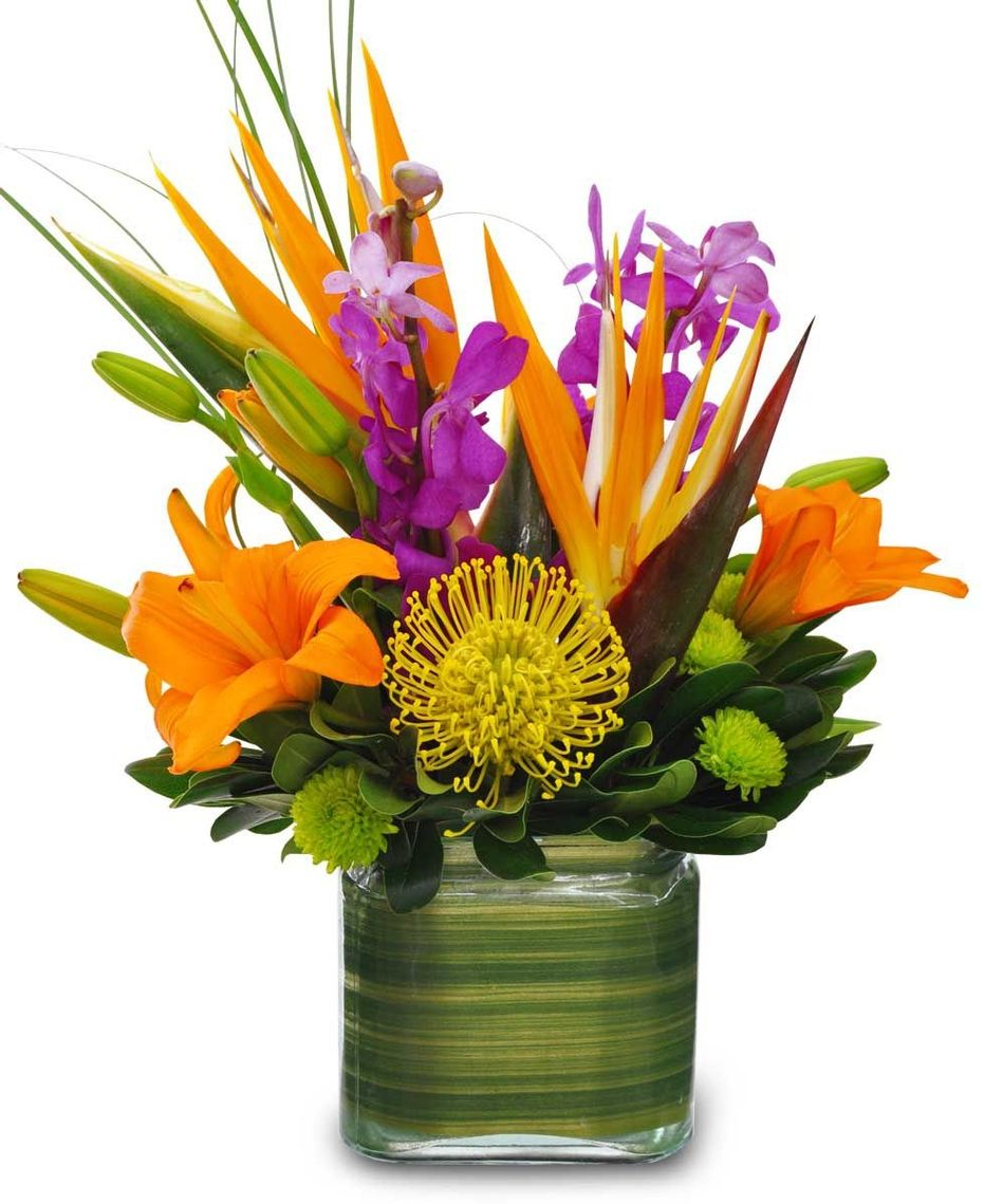 Exotic Floral Arrangements Out Of 5 Dentists Recommend This