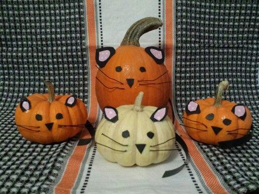 Pumpkin cat and kittens