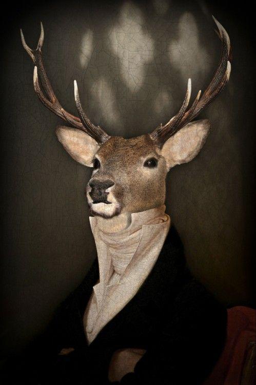 Le grand seigneur - Photographie,  30x45 cm ©2013 par Philippe TYBERGHIEN -                                            Papier, Animaux, Photographie, Photographies couleur, portrait animalier, portrait, costume, habit
