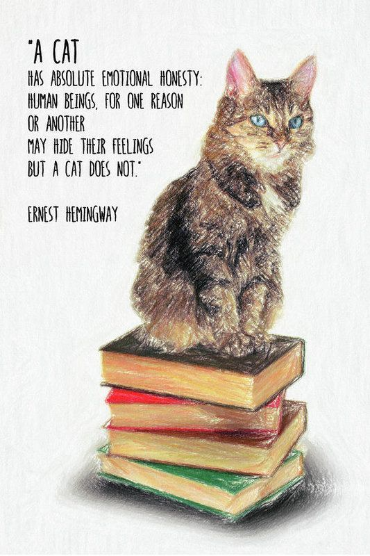 Cat Quote by Ernest Hemingway Art Print by Zapista