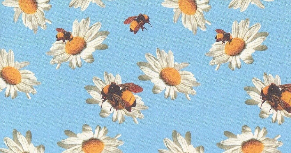 You Can Also Upload And Share Your Favorite Tyler The Creator Wallpapers Tyler The C In 2020 Tyler The Creator Wallpaper Tyler The Creator Aesthetic Desktop Wallpaper