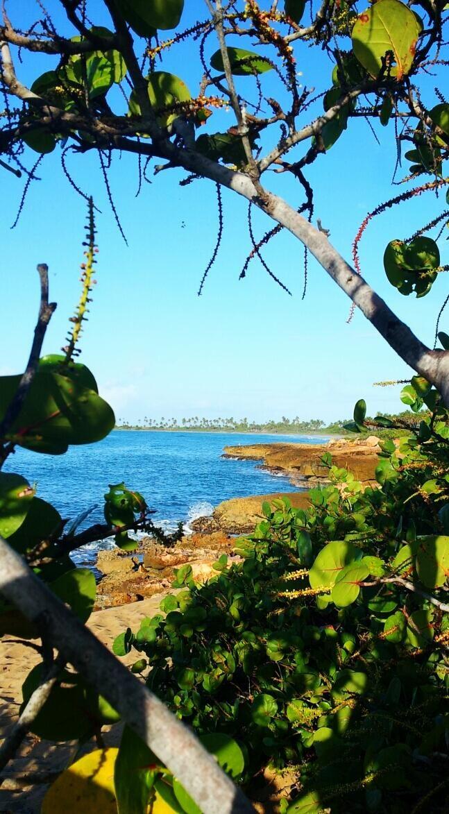 LaPerlaPR: Calienta el sol de Guánica ...