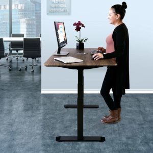 Top 10 Best Electric Standing Desks In 2020 Review With Images