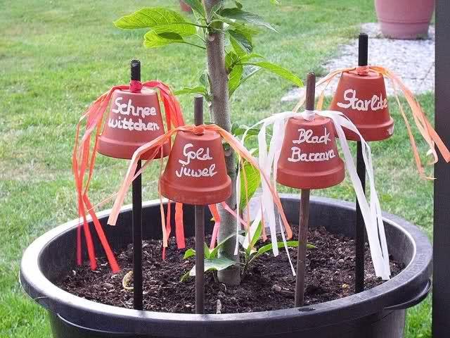 Trend Ideen zur Beschriftung von Pflanzen gesucht Seite Gartengestaltung Mein sch ner Garten online