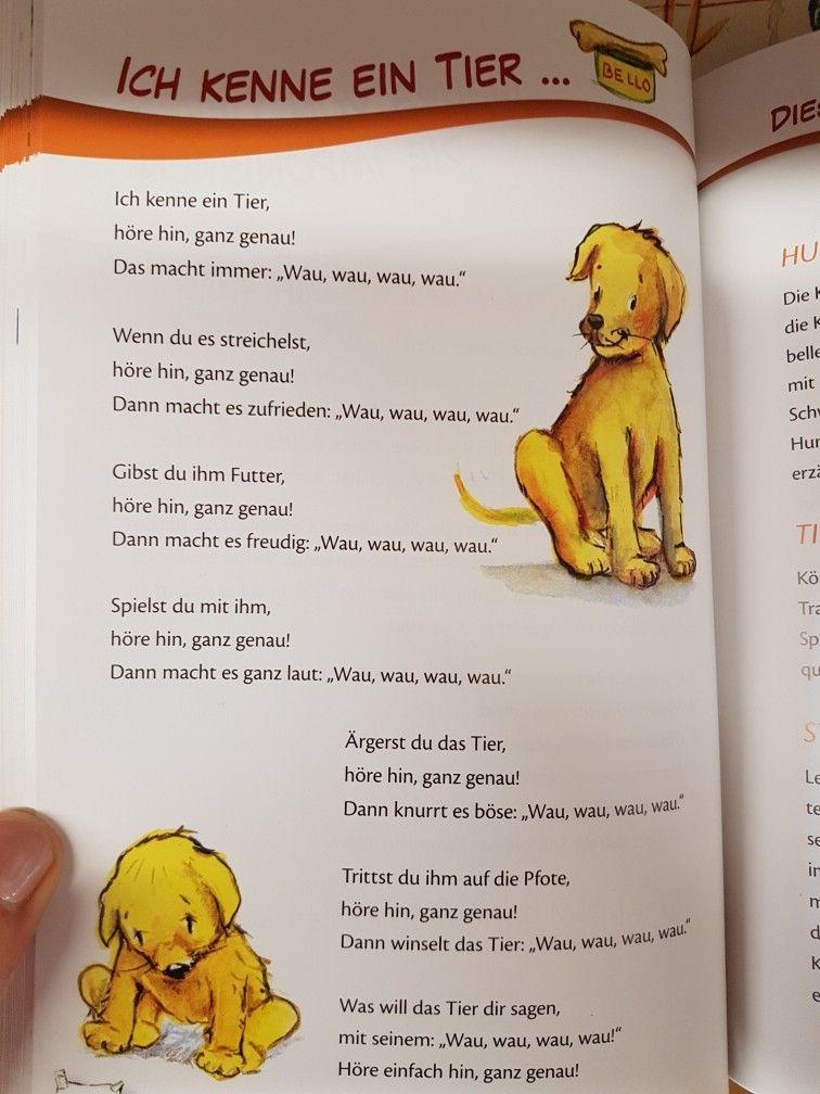 Ich kenne ein Tier Hund krippe kita kindergarten