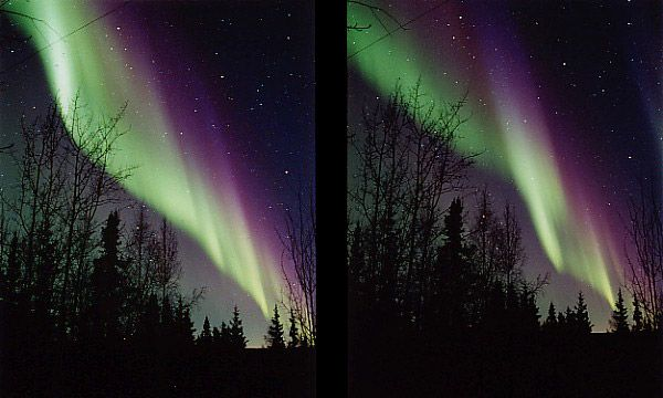 Green and purple curtains of the aurora borealis (Northern Lights) appeared in the skies over Alaska in this pair of photos from March 2001. Energetic particles (mostly electrons and protons) in Earth's magnetosphere collide with atoms and molecules in the upper atmosphere. The collisions add energy to the atoms and molecules, which in turn emit the energy as light. Oxygen atoms give off the green light seen in these two photos, while nitrogen molecules emit the purple hues.