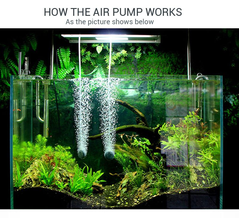 High power ultra silent aquarium air pump fish tank high for Air pump for fish tank