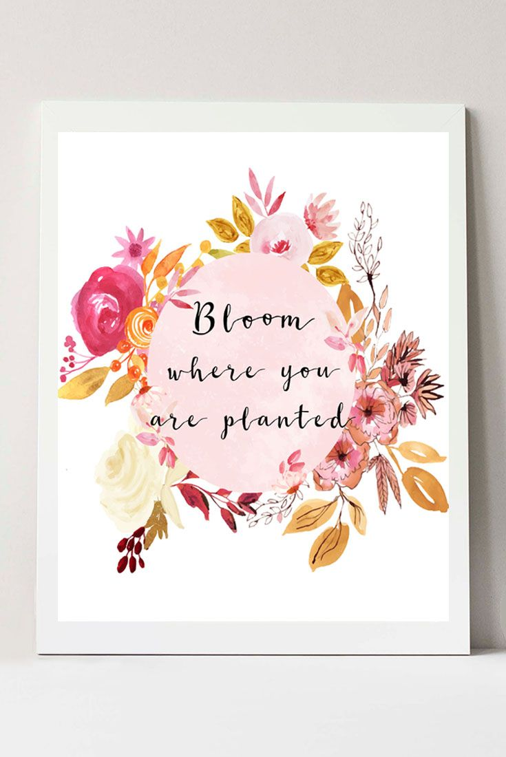 Bloom Where You Are Planted Sign Floral Wall Decor Flower Wall Art