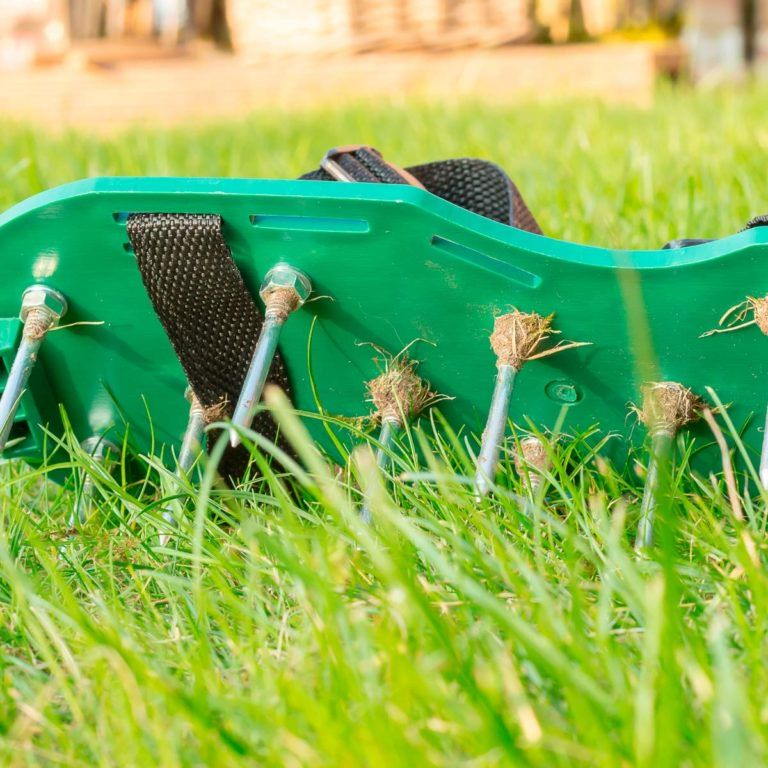 Lawn Aerator Shoes Do They Really Work? Grass tips