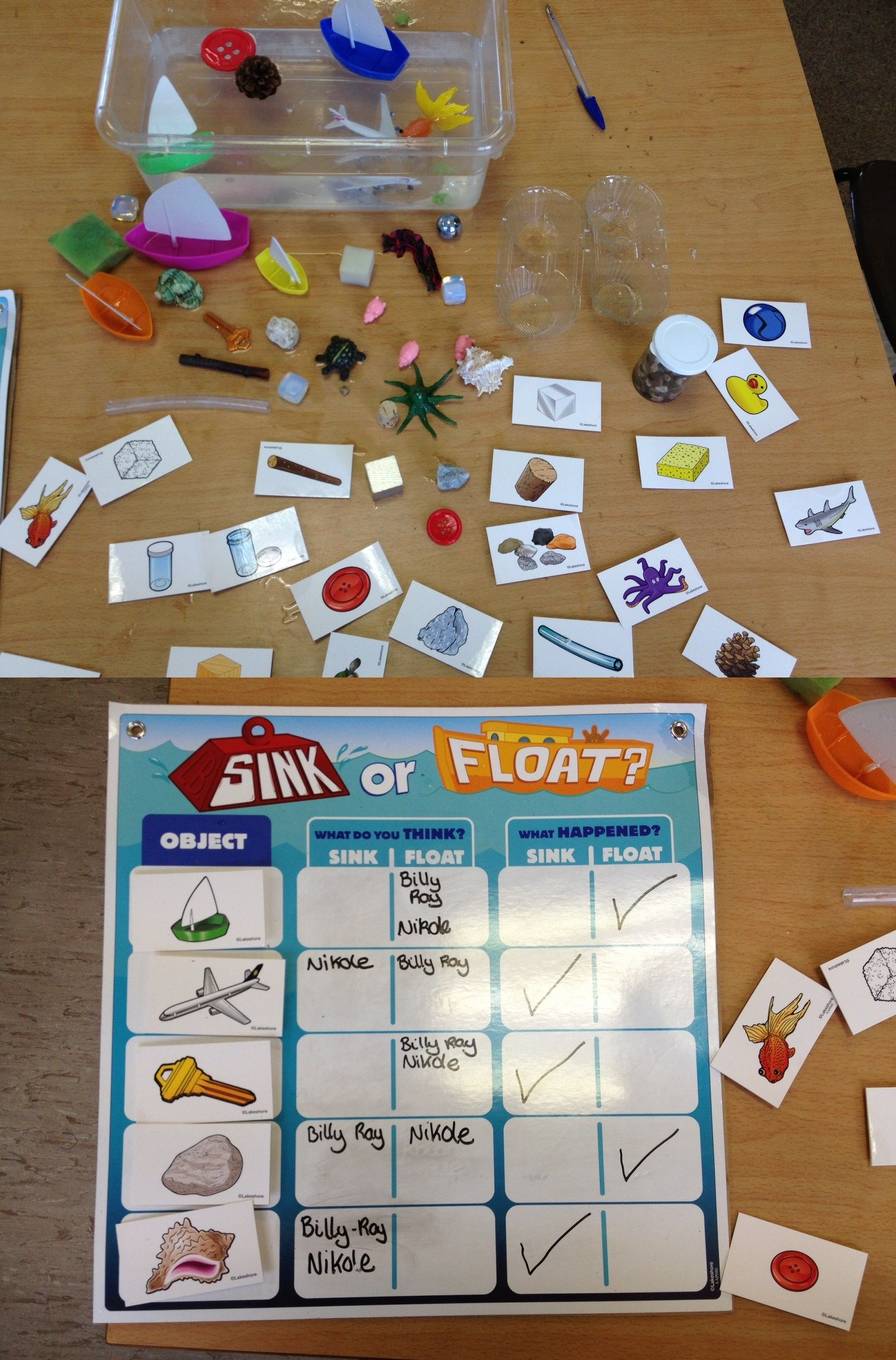 Floating And Sinking Fun Prediction Activity