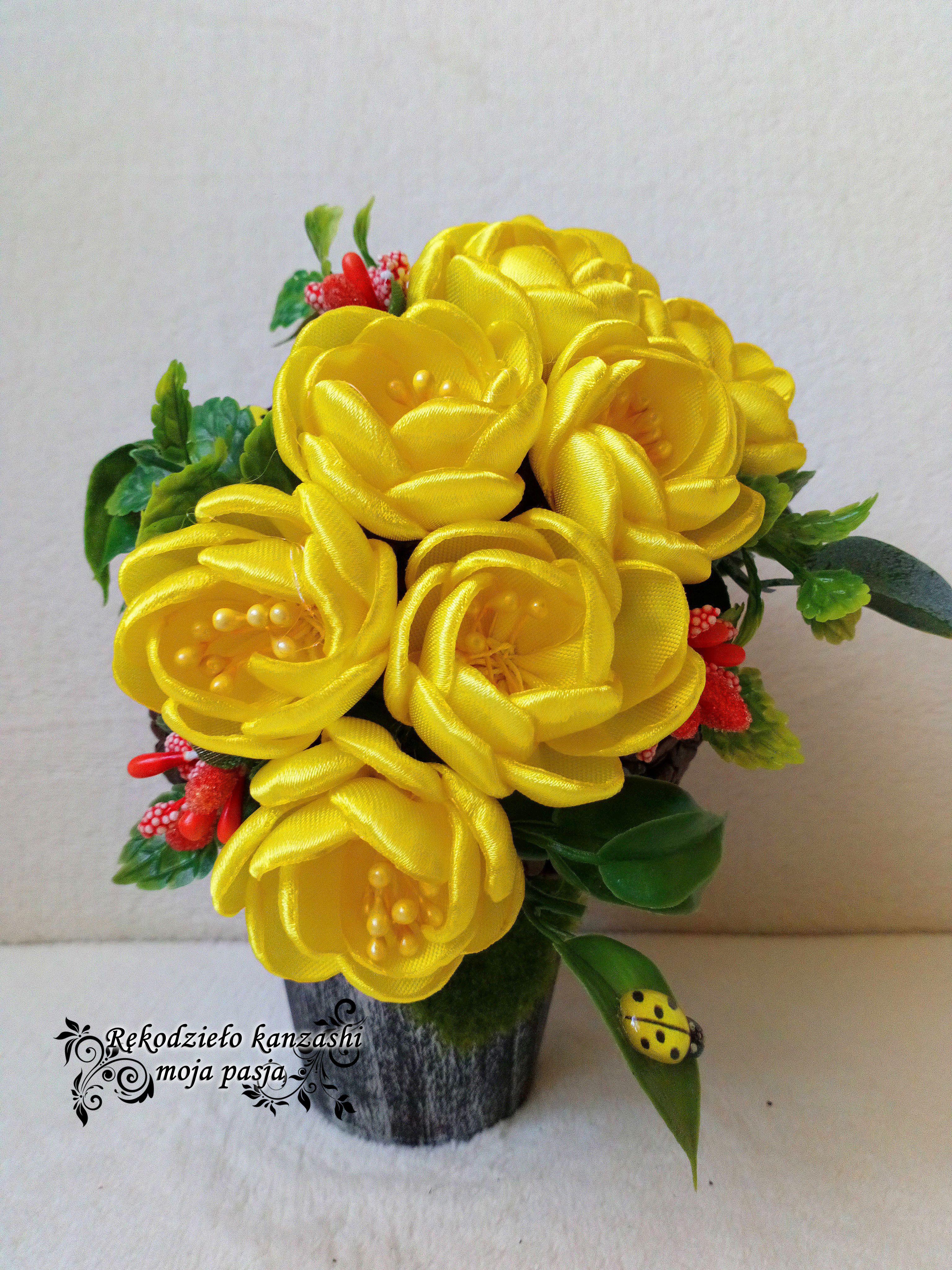 Flower Box Kawowy Na Doniczce Plants Rose Flowers