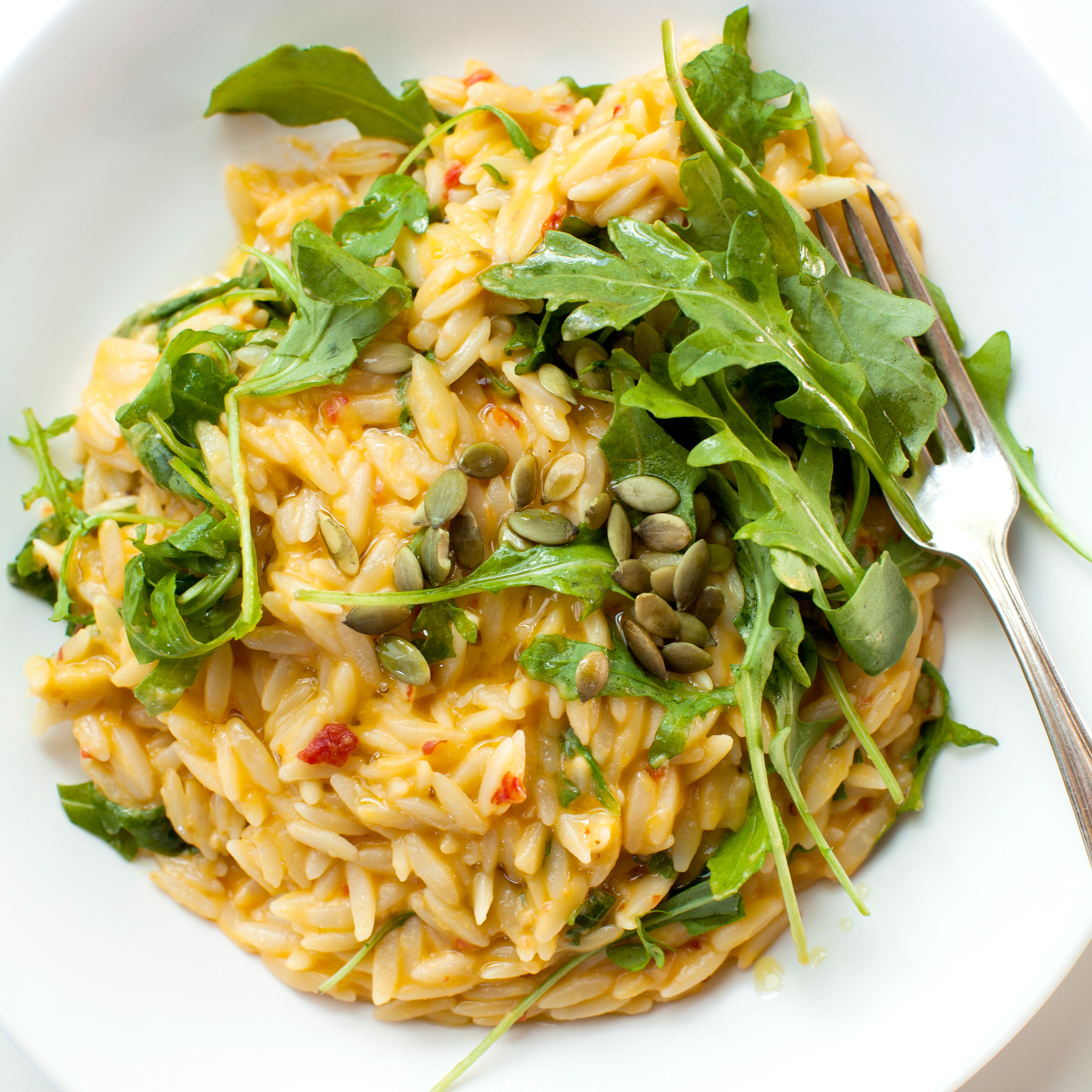 Cheddar cheese and Pumpkin puree combine together to make a very velvety and delicious sauce for this warm orzo and arugula pasta salad.
